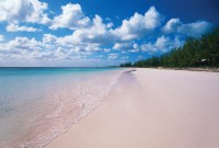Pink sands and turquoise waters